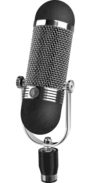 microphone-159768_640